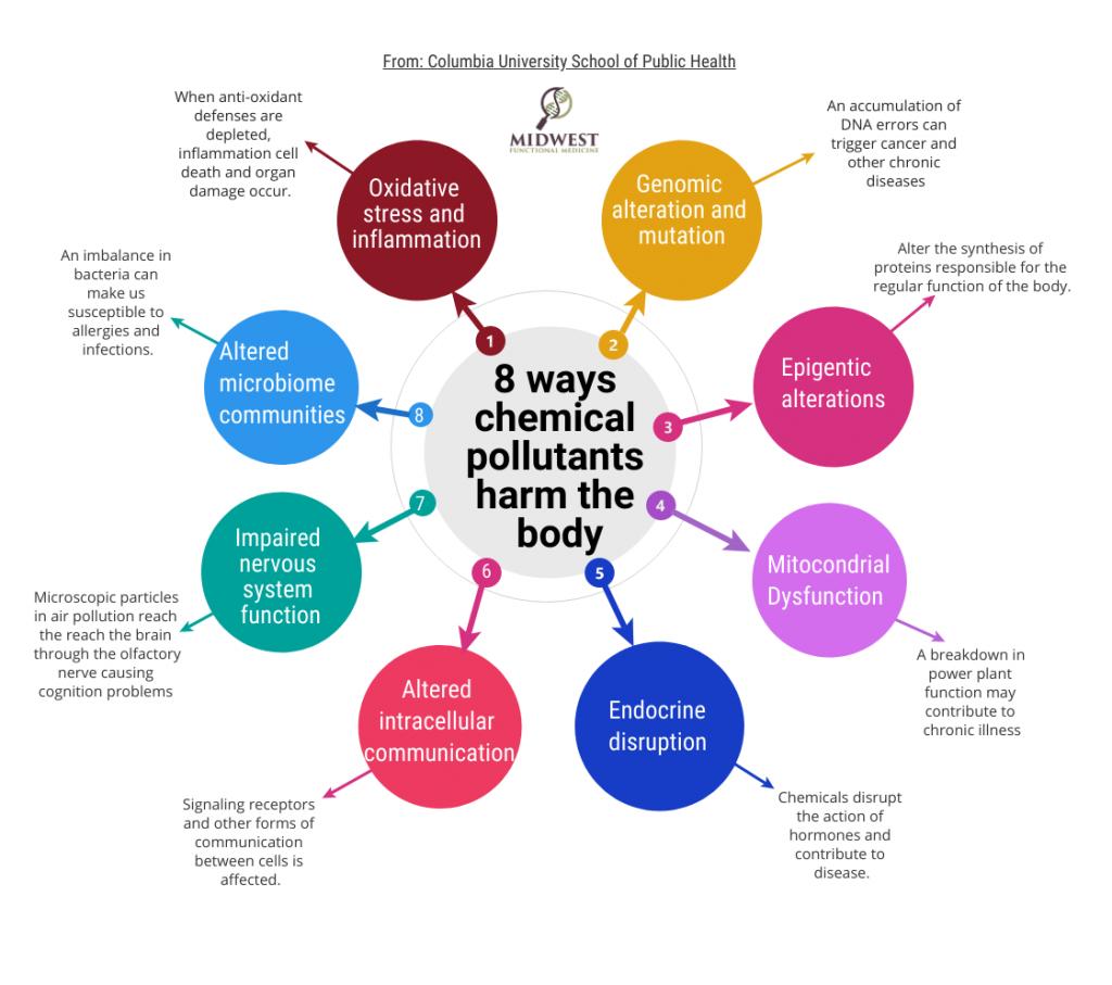 8 Ways pollutants harm the body